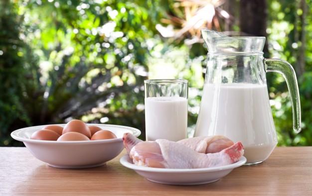 Proteini, beljakovine in aminokisline